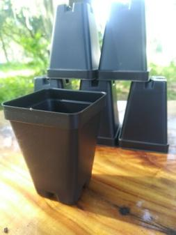 50 Count 2.5 inch SQUARE BLACK NURSERY POTS  - FREE SHIPPING