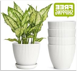 6 Inch Plastic Planters with Saucers Indoor Flower Plant Pot