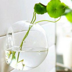 Ball 10cm Clear Glass Hydroponic Pot Vase Wall Hanging Flowe