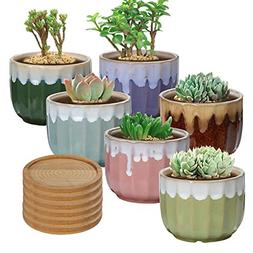 Ceramic Succulent Planter Pots Included Bamboo Trays - 6 Pac