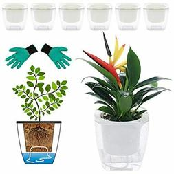 DeEFL 6 Packs 5 Inches Clear Self Watering Planters Plastic