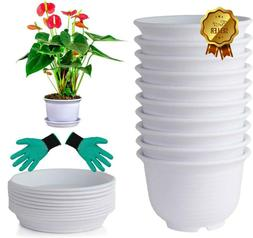 DeElf 12 Sets Plastic Flower Pots 6 inch White Planters with