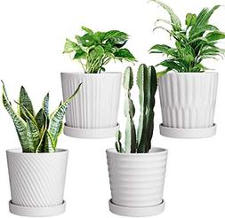 Flower Pots,6 Inch Succulent Pots with Drinage,Indoor Round