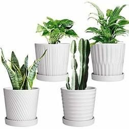 Flower Pots,6 Inch Succulent With Drinage,Indoor Round Plant