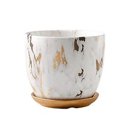 Orchid Pot 6 Inch Ceramic Plant Flower Pots with Holes and S