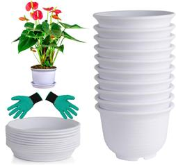 Plastic Flower Pots 6 inch Planters with Drainage and Saucer
