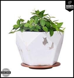 White Ceramic Plant Pot with Drainage Hole and Saucer 7 inch
